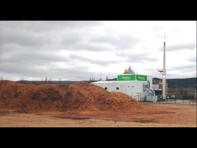 la biomasa hace frente a la biomasa