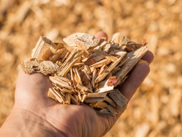 Madrid ayuda al cambio a biomasa