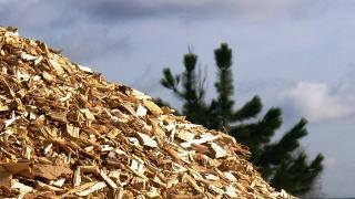 astilla procedente de biomasa forestal