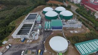 biogastur planta de gasificación