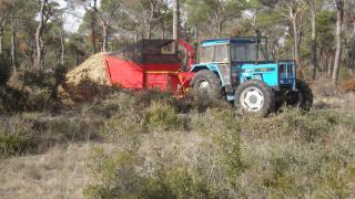 castilla la mancha se cambia a biomasa