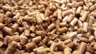 Serra se une a la biomasa
